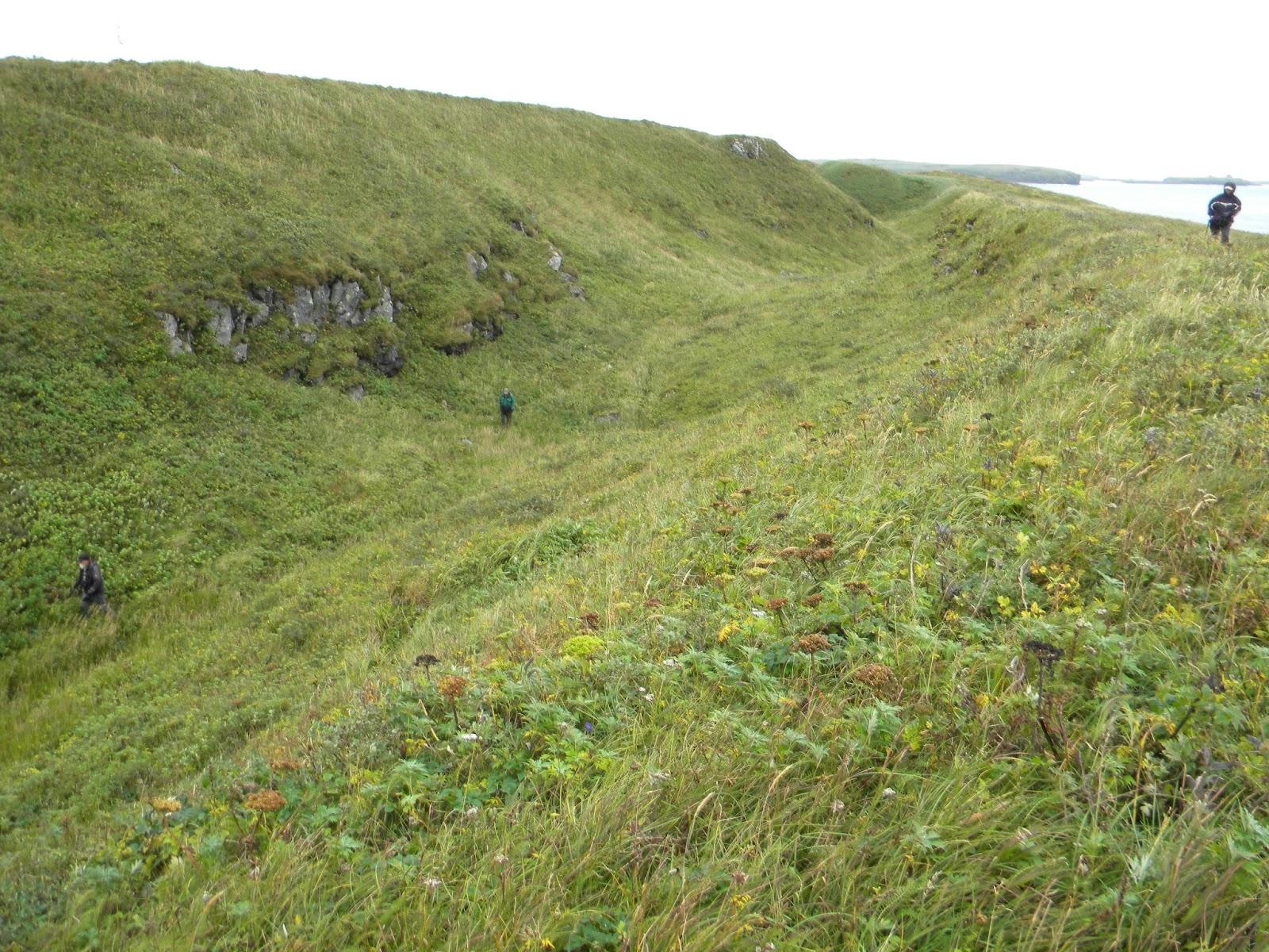 Jrs Red Lake >> Slow Birding: Pribilof Islands--9/11-23/2015