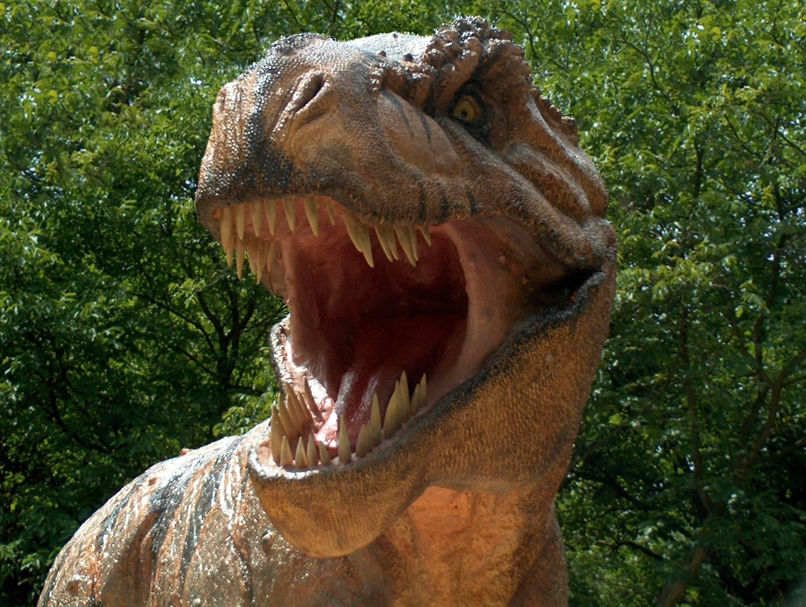 Blog Dinos Melhores Imagens Sobre Dinossauros