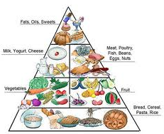 Health Tips for Today - Food Guide Pyramid