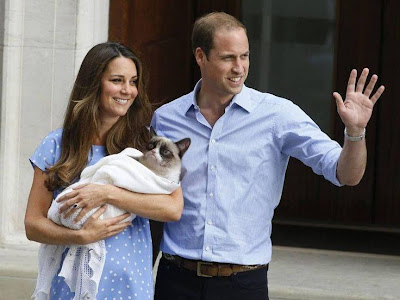 Grumpy cat the royal