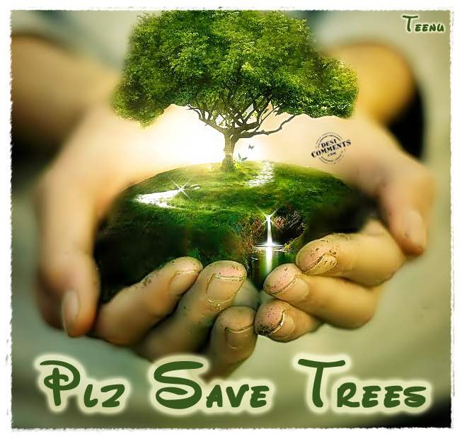 children essay on save trees and plants Explore save mother earth, save life, and more short essay on save earth, save life for children and studentsmother earth as · save mother earthsave life life essayshort essayways to savesample resumeplantstreescollege scholarships.