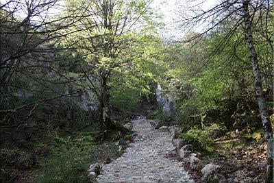 Camino recuperado al Pto. de Andoin