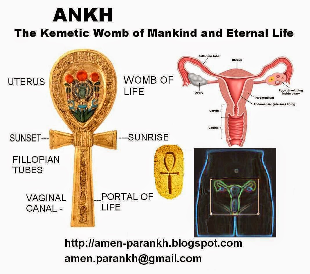 nutas ankh ankh the kemetic womb of mankind and symbol