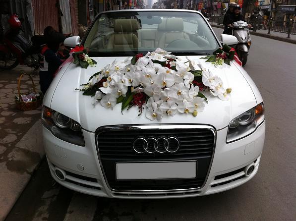 Xe cưới Audi A4 đầy sang trọng,Xe cưới mui trần