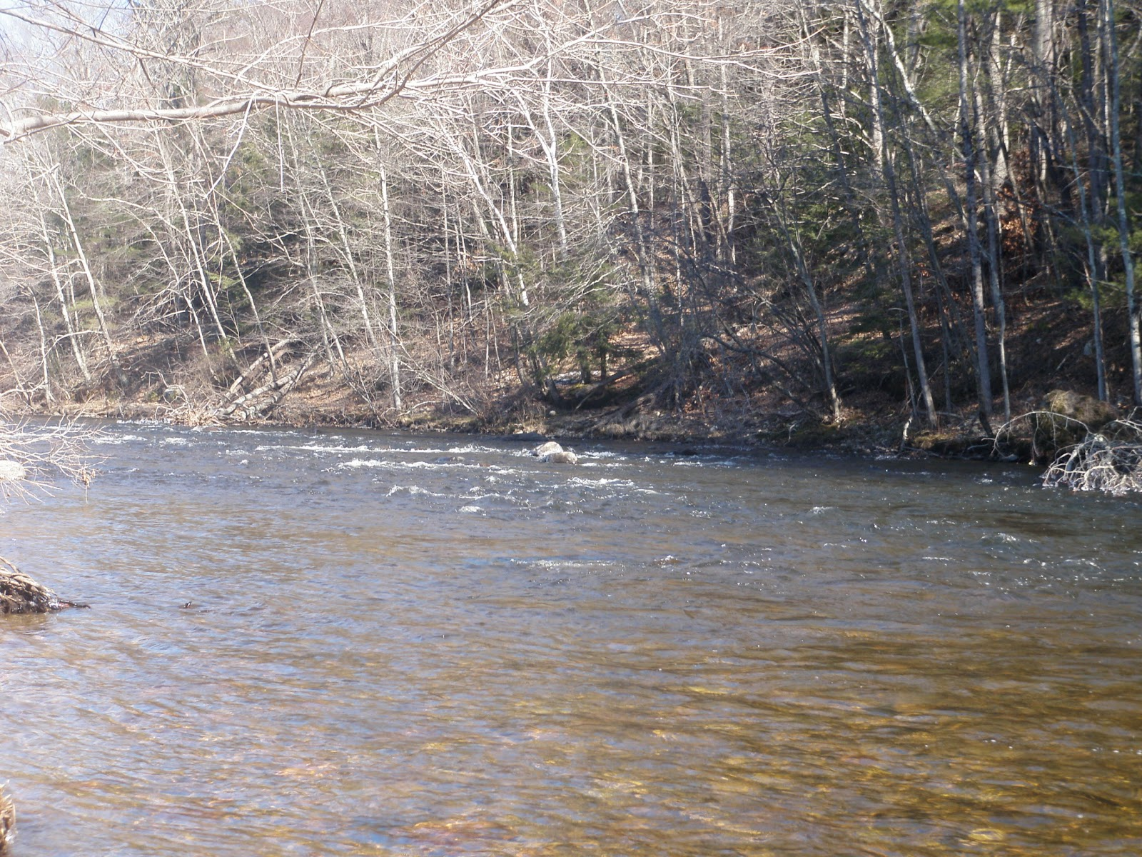 River riptide anglers farmington river for Farmington river fishing