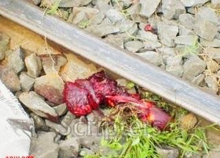 Kanak-Kanak Mati Di Landasan Keretapi