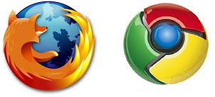 Usa Chrome o Firefox