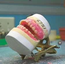 Orthodontic Dentist