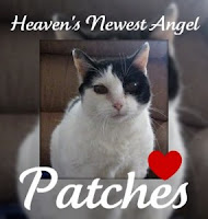 We will miss you Patches