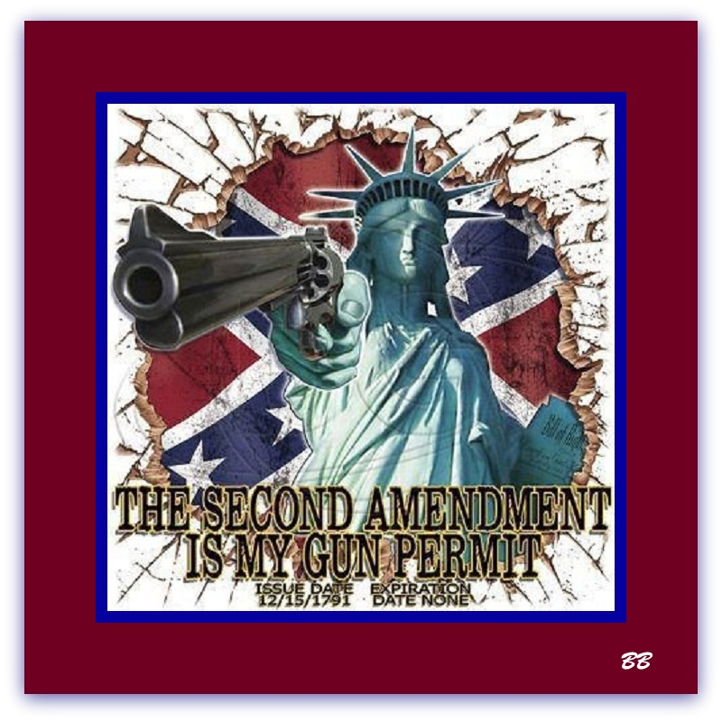 American Gun Permit FTW! - Legal and Activism
