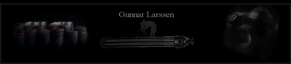 Gunnar Larssen