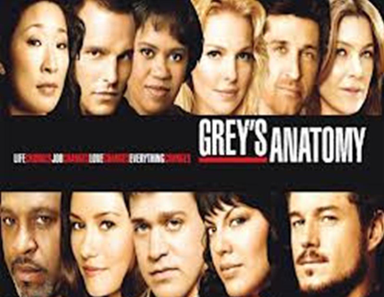You Watch Online Free Watch Greys Anatomy Season 9 Episode 6 S09e6