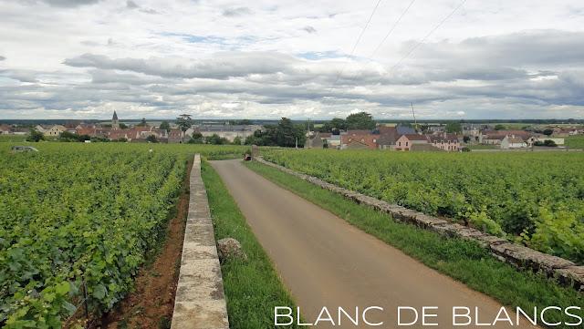 DRC La Tâche - www.blancdeblancs.fi