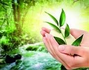 Подпишитесь на «Медитацию Омоложение в энергии Тета» и получите подарок