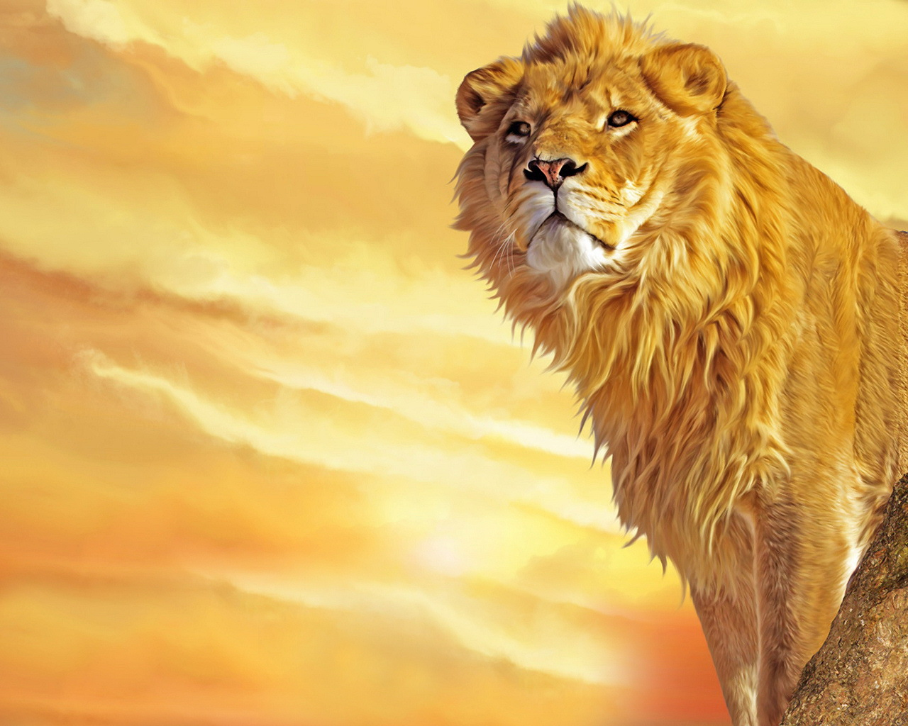 trololo blogg: 3d lion king wallpaper