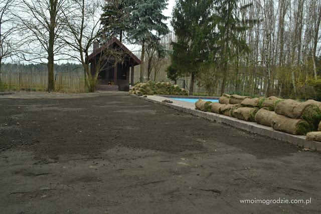 trawniki z siewu z rolki grojec warszawa tarczyn warka piaseczno
