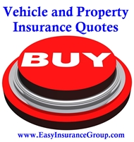 Auto - Truck - SR22 - Motorcycle - ATV- RV - Boat - Homeowners - Renters - Personal - Business - Much More - EasyInsuranceGroup.com