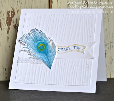 Fine Feathers from Stampin' Up