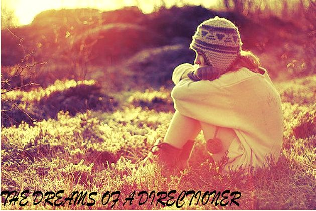 The dream of a directioner.