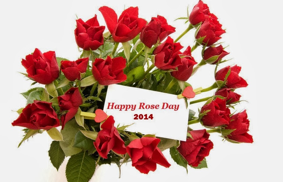 Happy Rose Day 2014 Images