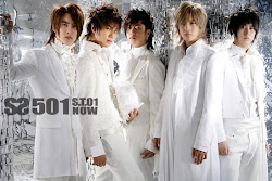 SS501 ST 01