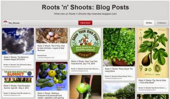 Roots 'n' Shoots on Pinterest!