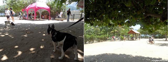 onde passear onde comer com cachorro no Rio restaurante praça pet friendly