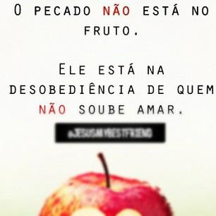Frases de Natal engraçadas para Facebook - zun.com.br