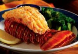 how to cook florida lobster tails at home