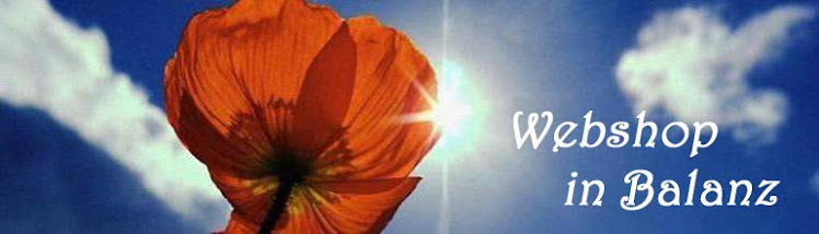 Webshop in Balanz banner