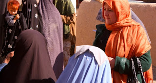 http://www.duffelblog.com/2015/05/in-desperation-afghan-women-turn-to-peta-for-legal-representation/