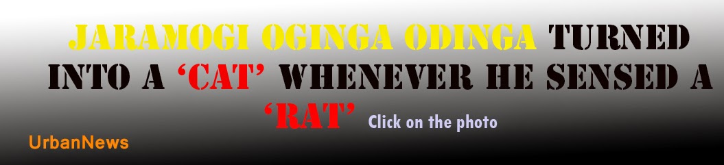Jaramogi Oginga Odinga turned into a 'cat'