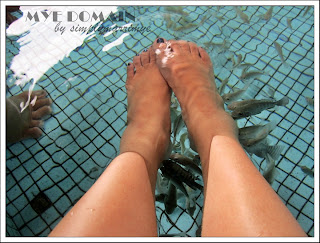 my feet having the fish spa