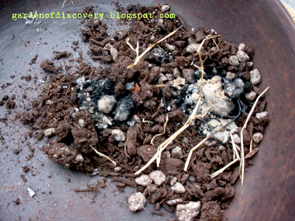 Garden of discovery fire in the hole potting soil for Potting soil