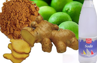 ingredients for homemade ginger ale