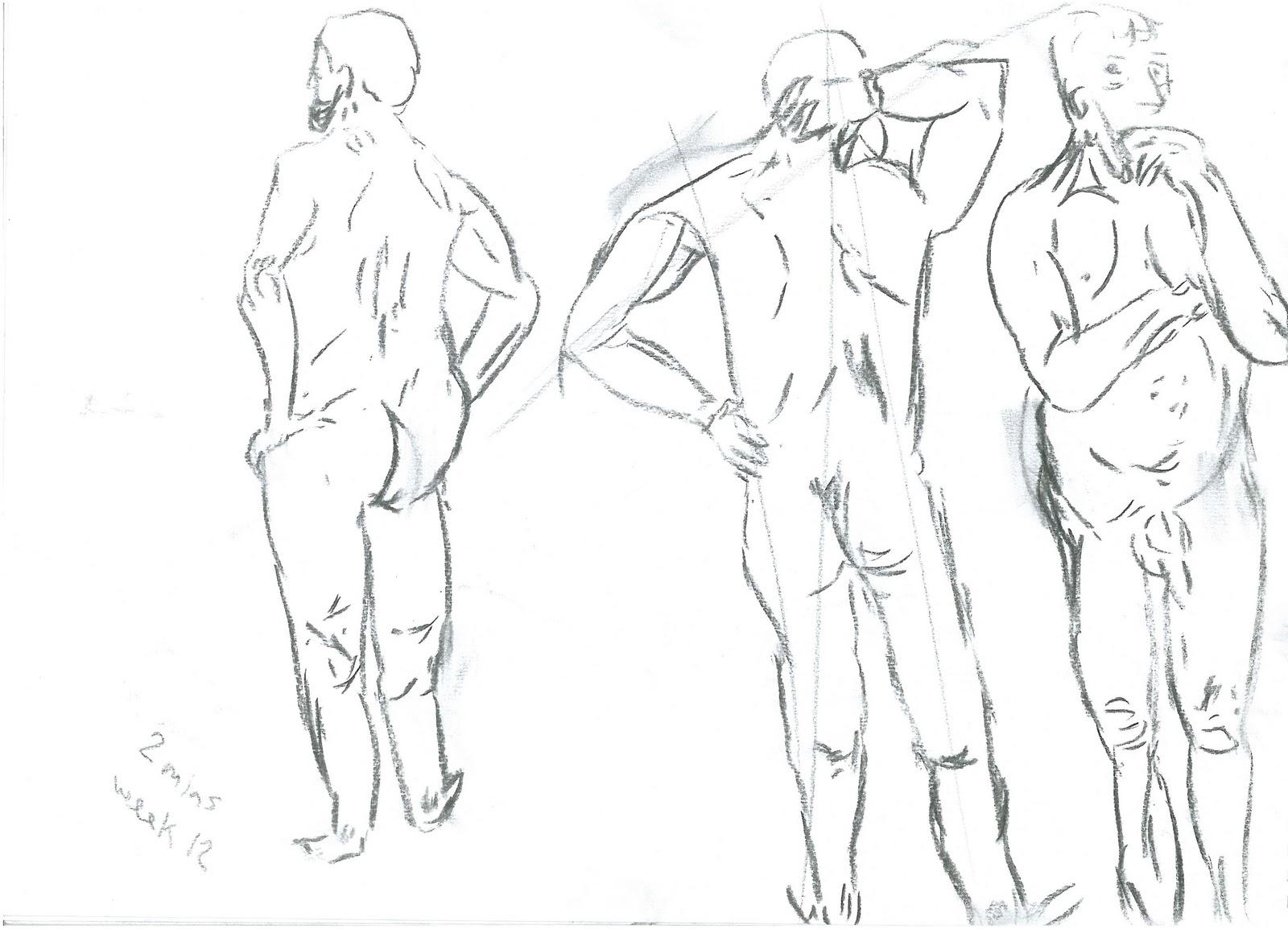SarokZana O D: Week: 12 Life Draawing and Basic Human Anatomy