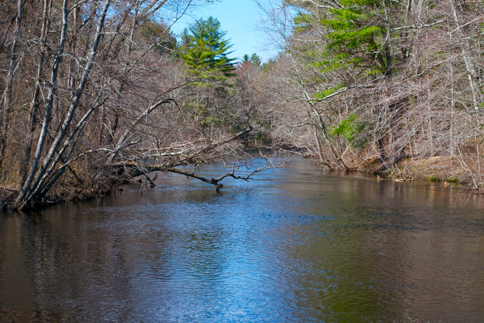 The Ipswich River.