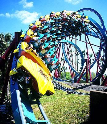 Busch Gardens Tampa Bay Florida Best Honeymoon
