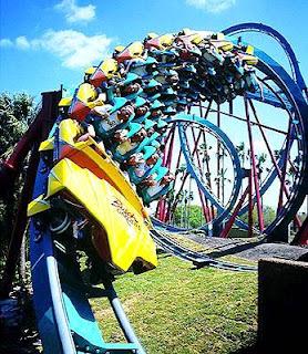 Busch Gardens Tampa Bay (Best Honeymoon Destinations In USA) 10