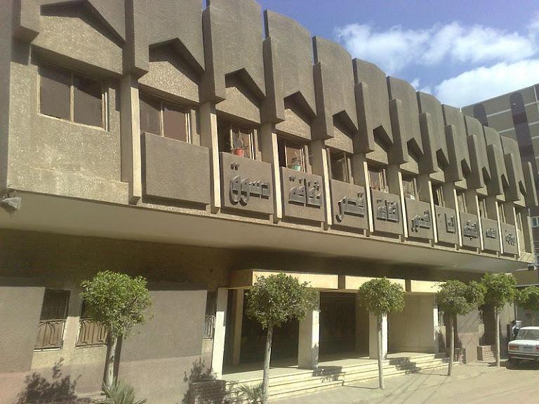 قصر ثقافة دسوق.