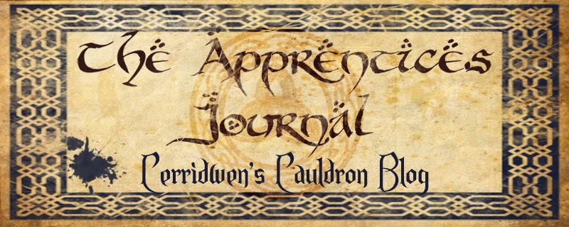 The Apprentice's Journal
