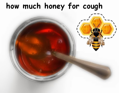 how much honey for cough