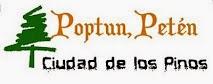 Logo de la Pagina