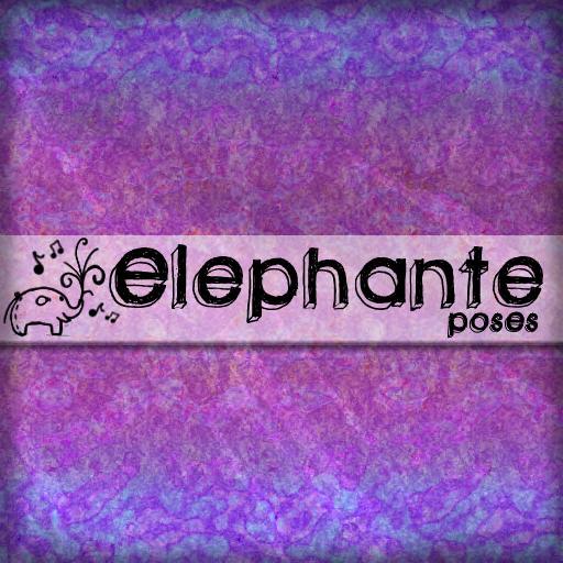 elephante+poses