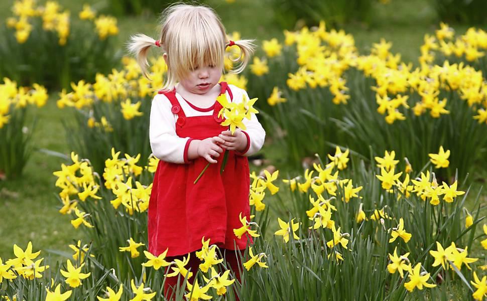 flores jardim secreto:jardim secreto de cada um cada pessoa possui uma espécie de jardim