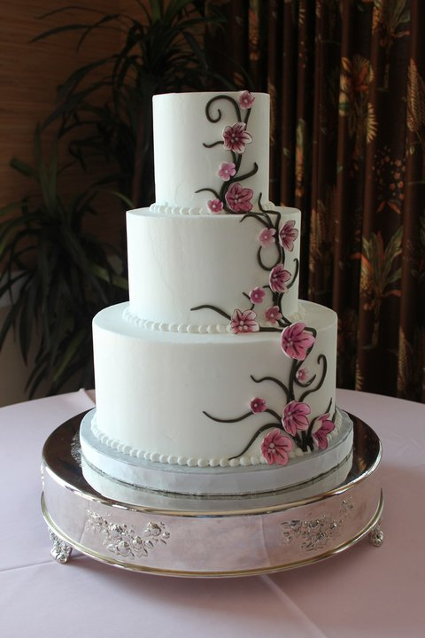 Sheris edible designs cake decorating classes are back winter cake decorating classes are back winter 2011 2012 junglespirit Gallery