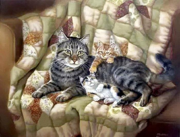 au fil des pages      les chats de judy gibson