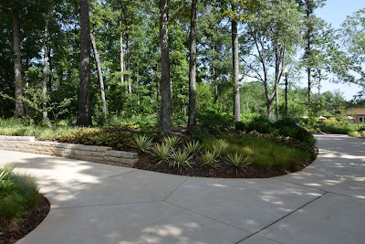 Using georgia native plants july 2015 for Botanical gardens gainesville ga