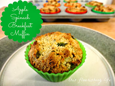 Apple Spinach Breakfast Muffins | http://www.thisflourishinglife.com