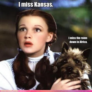 Dorothy & Toto www.hungergameslessons.com